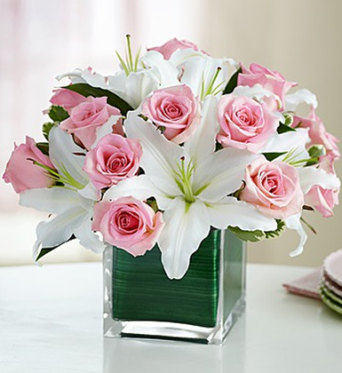 Rose & Lily Celebration - Flowers & Gifts Delivery Amman Jordan