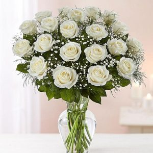 Purity Roses- Flowers & Gifts Delivery Amman Jordan