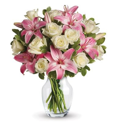 Soft Whispers - Flowers & Gifts Delivery Amman Jordan